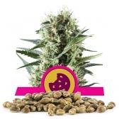 Royal Cookies ömlesztett vetőmagok