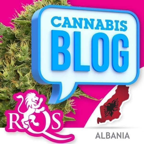 Cannabis in Albania